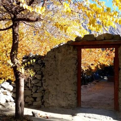 Beautiful autumn season in Ghulkin , Gojal