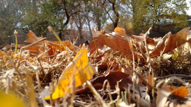 autumn-in-gilgit-city-2