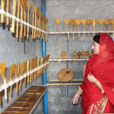 Hashoo Foundation starts 'sustainable carpentry workshop for women' in Gahkuch