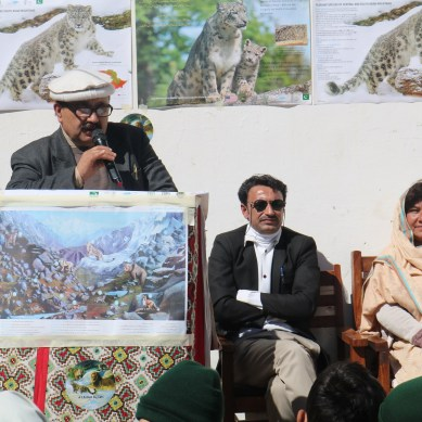 """Importance of protecting """"Big Cats"""" highlighted during event organized by WWF, Pakistan"""
