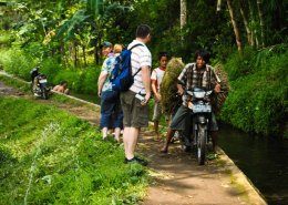 15 Days 14 Nights Java Overland