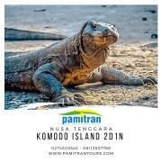 Sailing Komodo Liveaboard