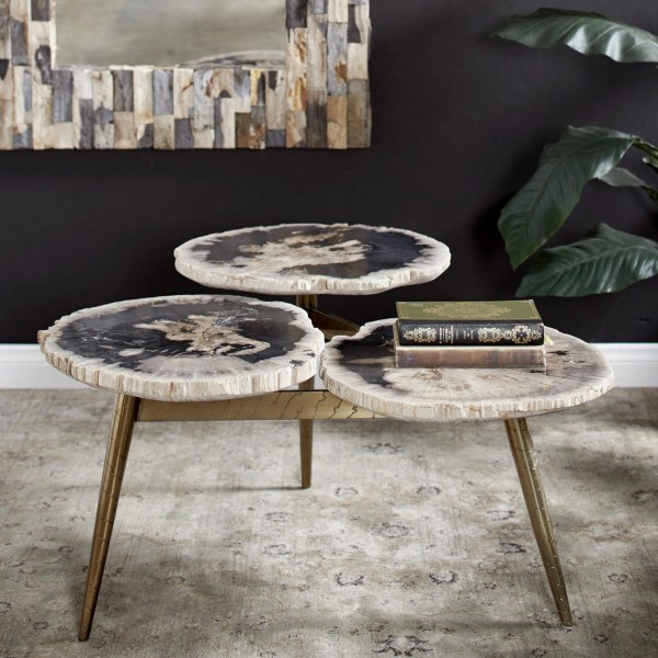 Fossil Wood Tier Coffee Table