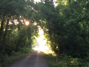 Bright light at the end of a path