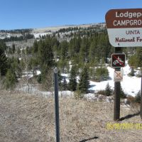 Lodgepole Campground, Daniels Summit, Utah