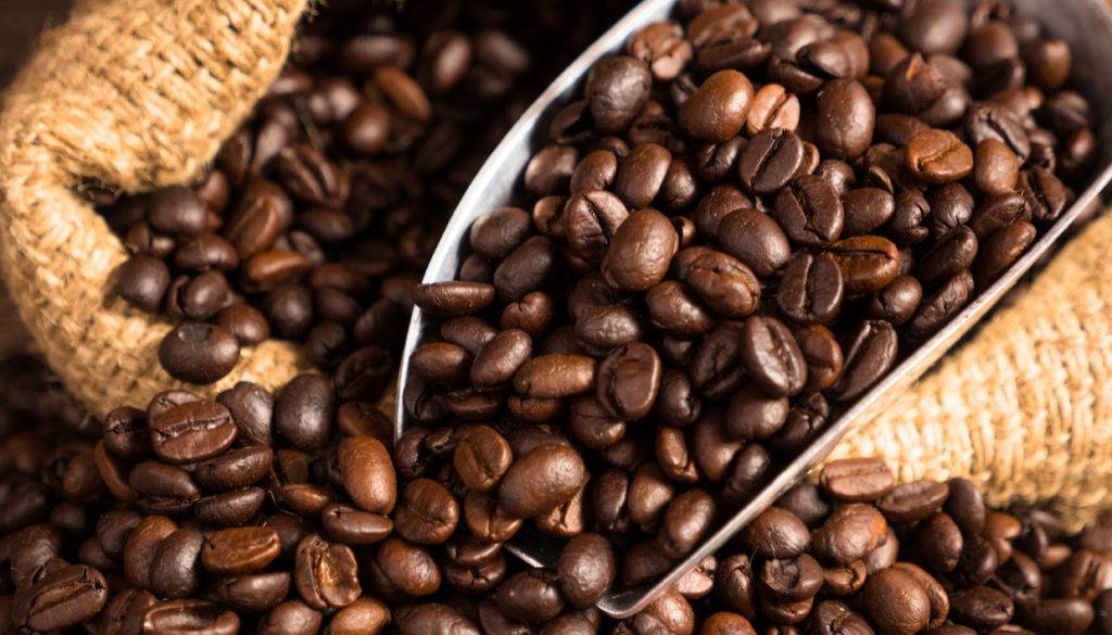 thehomeissue_coffeeseeds0-1024x585-1.jpg