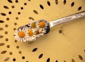 Tablespoon of chamomile