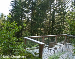 Salal cabin deck, Deep Forest Cabins, Paradise, Washington