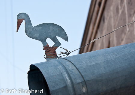 Gyumri downspout with stork, Armenia