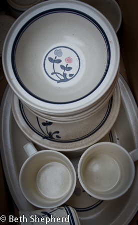 Dad's Pfaltzgraff Windsong dishes