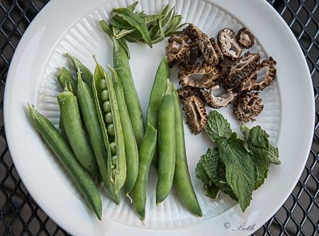Peas, morels, spearmint, lemon verbena