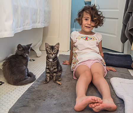 Two cats and my daughter