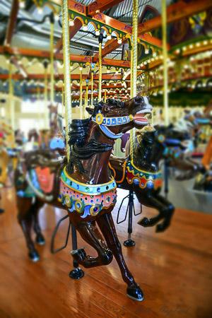 more carousel horses
