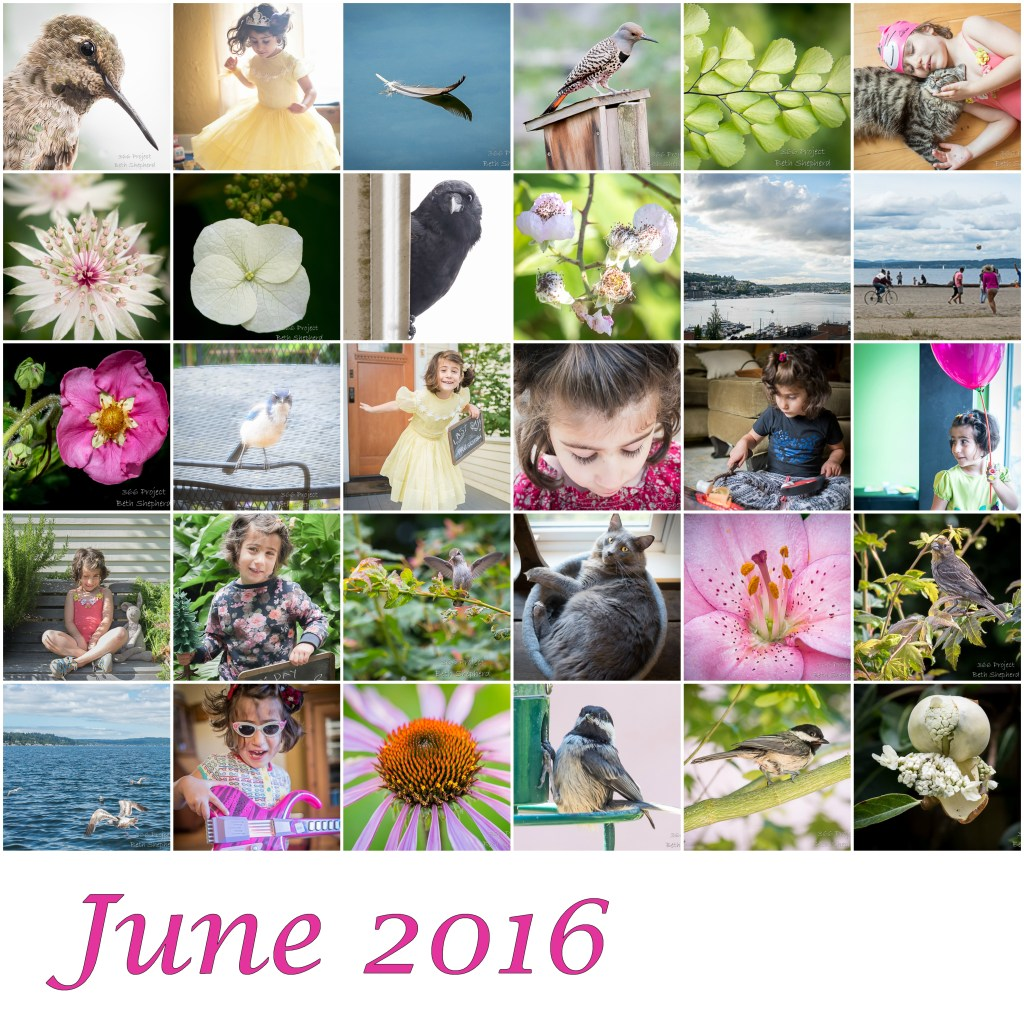 June 2016 photos
