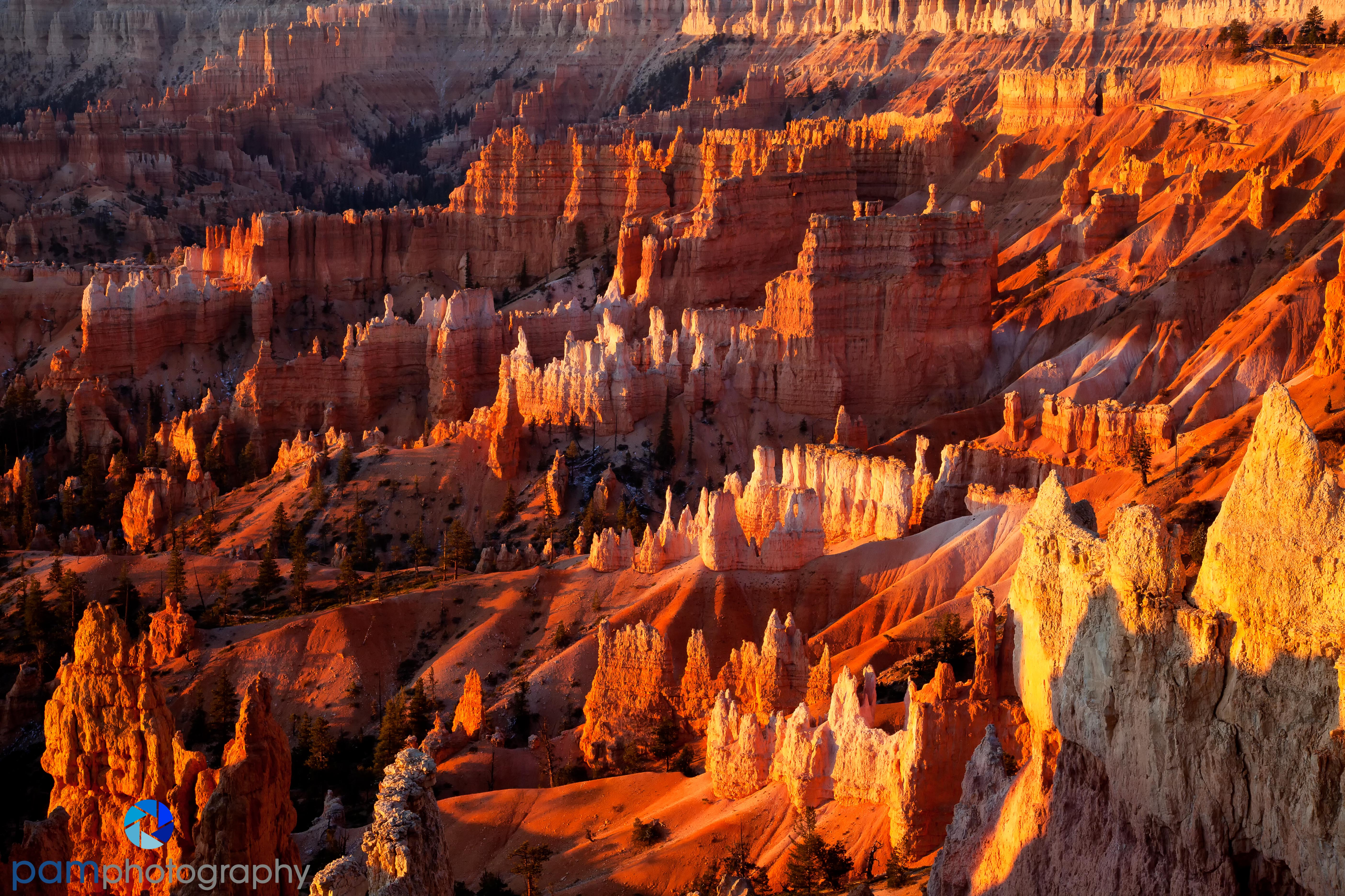A Weekend In Bryce Canyon National Park Pamphotography