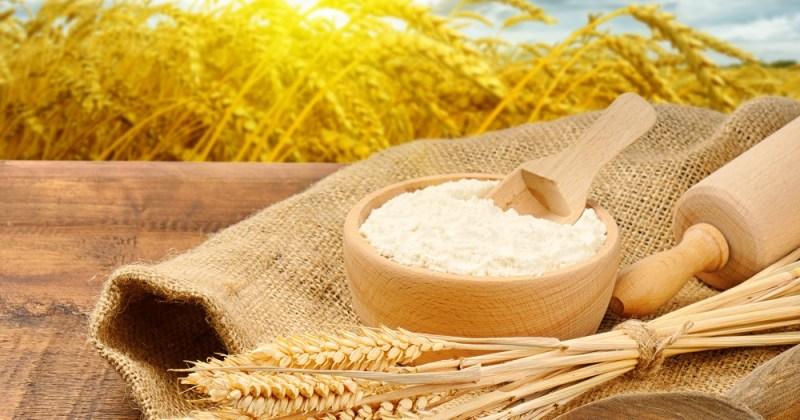 Forskning viser at fullkorn og kostfiber beskytter mot kreft og åreforkalkning, samt diabetes, lungesykdom og infeksjoner.