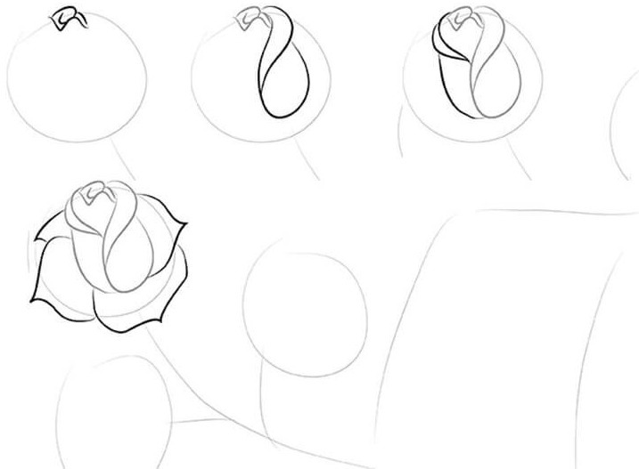 Σχέδιο τριαντάφυλλα από σχηματικό σκίτσο