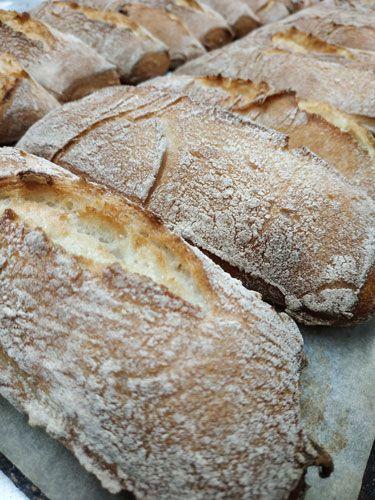 Bocadillo-chapata-Sin_Gluten-www.panaderiajmgarcia.com-Alicante