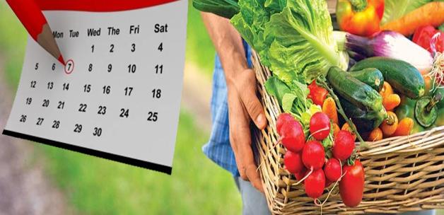 مواعيد زراعة الخضروات