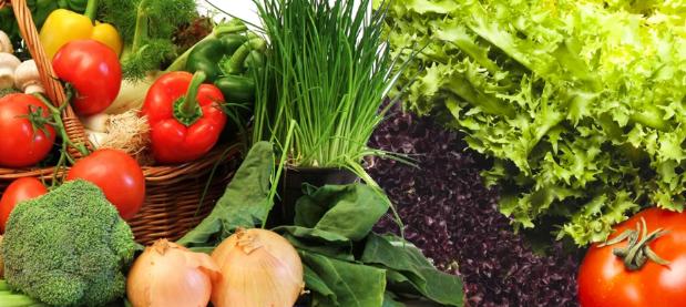 أسرع الخضروات نمواً و إنتاجاً