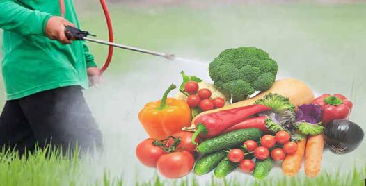 أنواع المبيدات و أضرارها