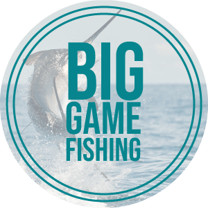 Round-Featured-BigGame