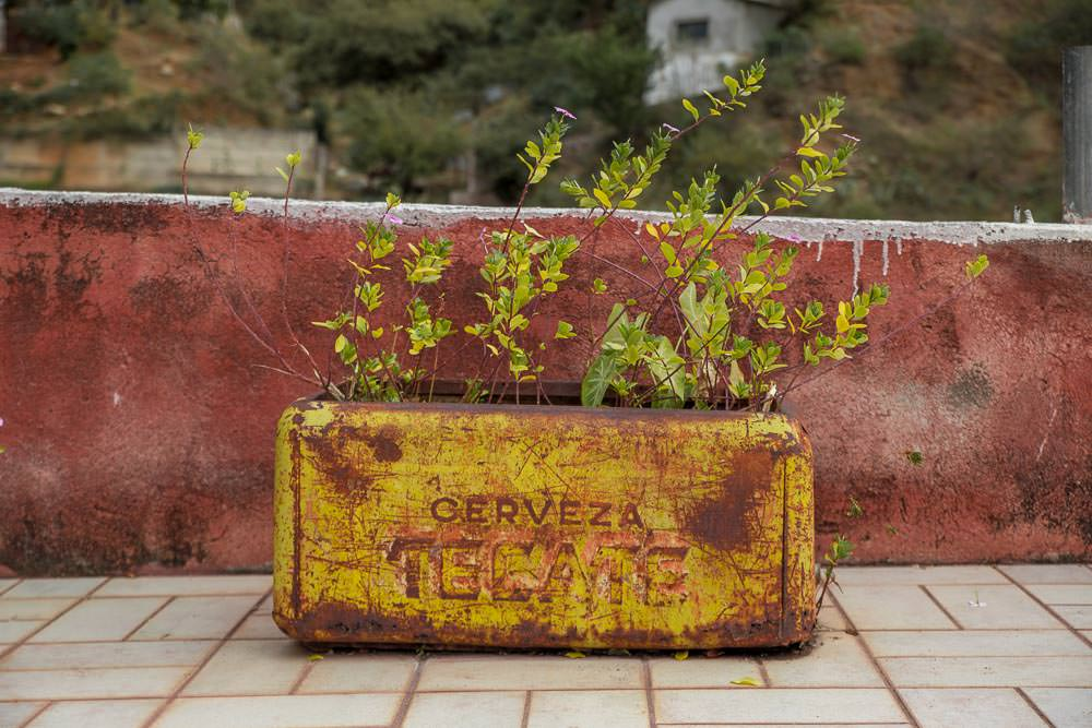 Drink Tecate—Batopilas, Copper Canyon, Mexico