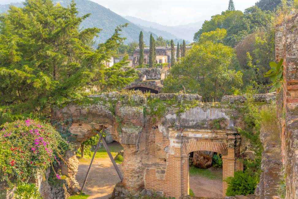 Gardens—Iglesia San Fancisco Grande