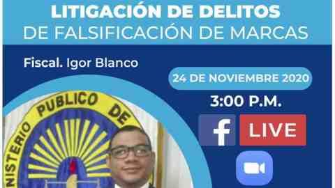 LITIGACIÓN DE DELITOS DE FALSIFICACIÓN DE MARCAS