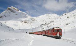 62.treno del bernina