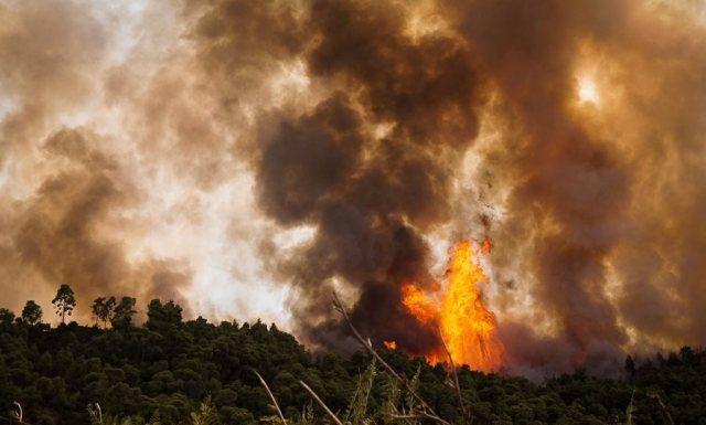 Διπλό πύρινο μέτωπο στην Αμαλιάδα: Νέα εστία φωτιάς ανάμεσα σε Γεράκι και Ανάληψη   panathinaikos24.gr