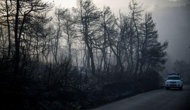 Βίντεο-σοκ καταγράφει την απόλυτη καταστροφή από τη φωτιά στην Εύβοια | panathinaikos24.gr