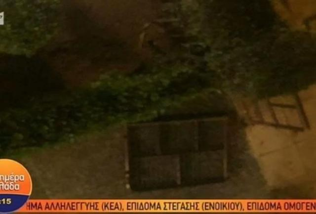 Έδωσαν ραντεβού για ξύλο εν μέσω καραντίνας στο Παλαιό Φάληρο (vid) | panathinaikos24.gr