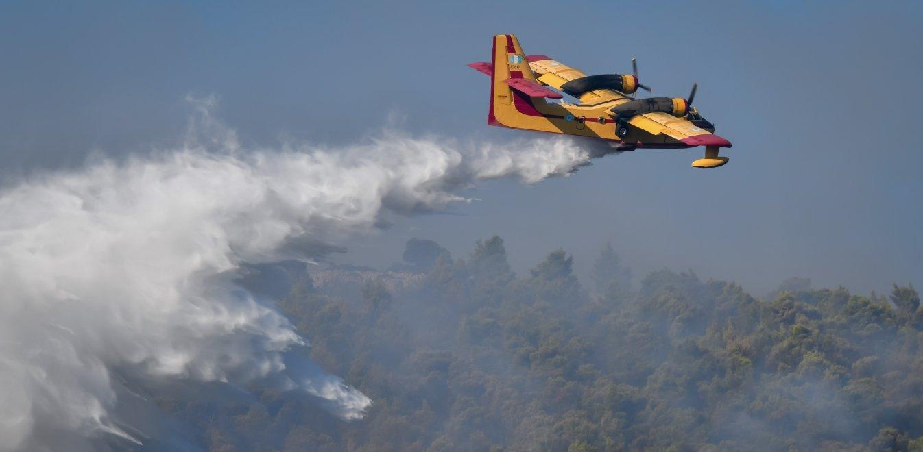 Φωτιά στα Βίλια: Τρίτη ημέρα μάχης με τις αναζωπυρώσεις | panathinaikos24.gr