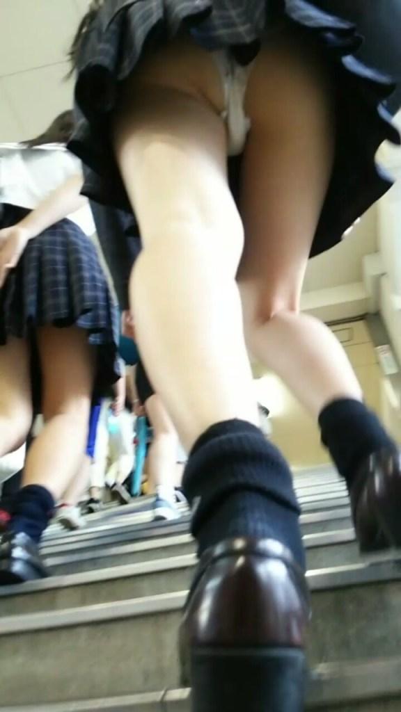 JKの階段パンチラ