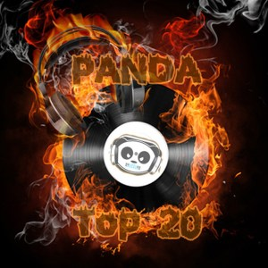 Panda Top 20 website
