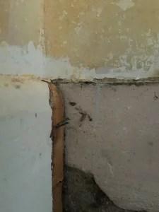 skirting board; a bit missing
