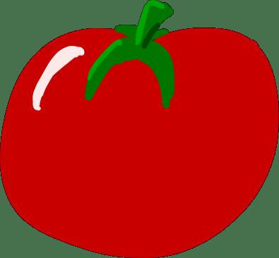 a hand-drawn shiny red tomato