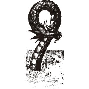 Dragón marino - Ilustración en vectores