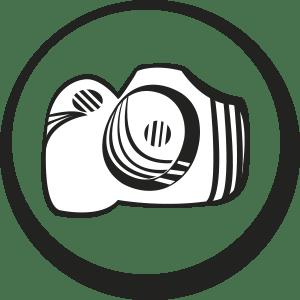 Fotografías gratuitas de libre acceso pandanna