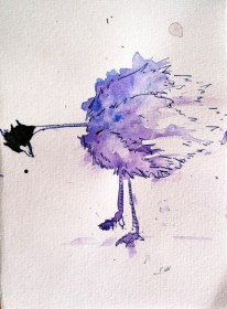 Hurricane Ostrich