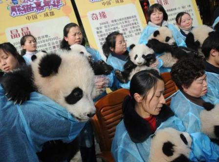 ChinaPhotos/Getty Images..MY BAO SHI IS IN HERE SOMEWHERE