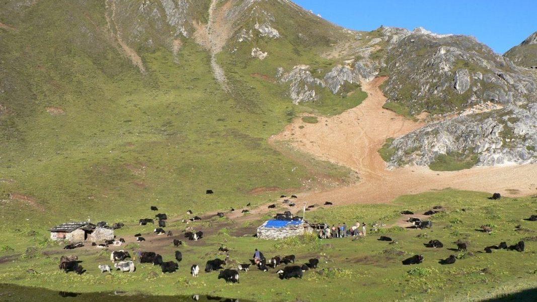 Baileys Trek- Arunachal Pradesh