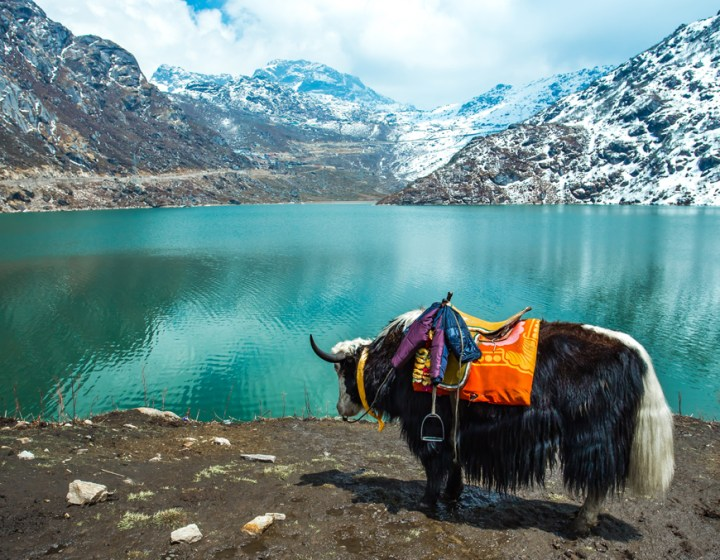 Gangtok-Lachen and Lachung Holiday Tour