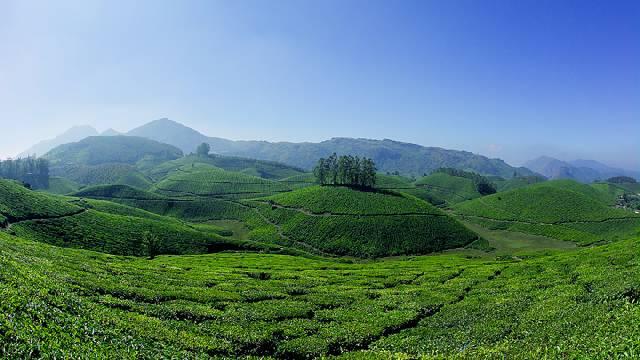Munnar-Hills-Kerala
