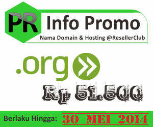 Promo nama domain dot org