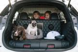 nissan-x-trail-4dogs-concept-3