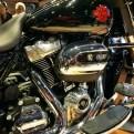 Harley Davidson Electra Glide Standard_28