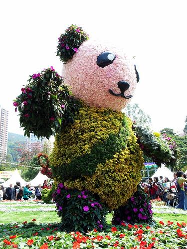 panda-flower