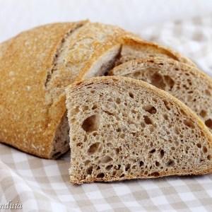 Pane con farina di farro spelta integra